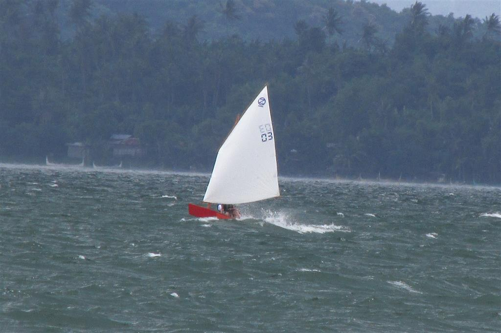 Learners in strong wind - oz goose sailboat